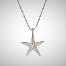 Medium Silver Starfish